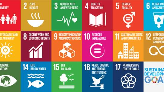 Webinar: Information Session for Business Partnership Facility: Enterprises for SDGs