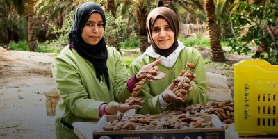 Economic and Political Stability in Tunisia Hinges on Sustainable Employment Opportunities